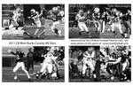 "36th Annual Bucks County Lions All-Star Game will be played Thursday June 9,2011 @ CB West ""War Memorial Field"""
